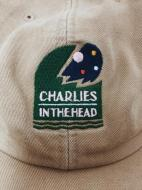 CHARLIES IN THE HEAD